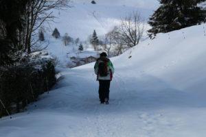 balade dans la neige